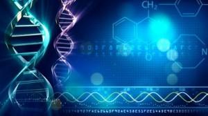 test_dna_genetyczne_markery